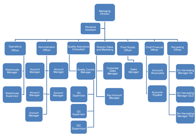 Kapiris bros organisational chart
